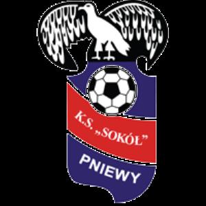 Herb klubu Sokół Pniewy