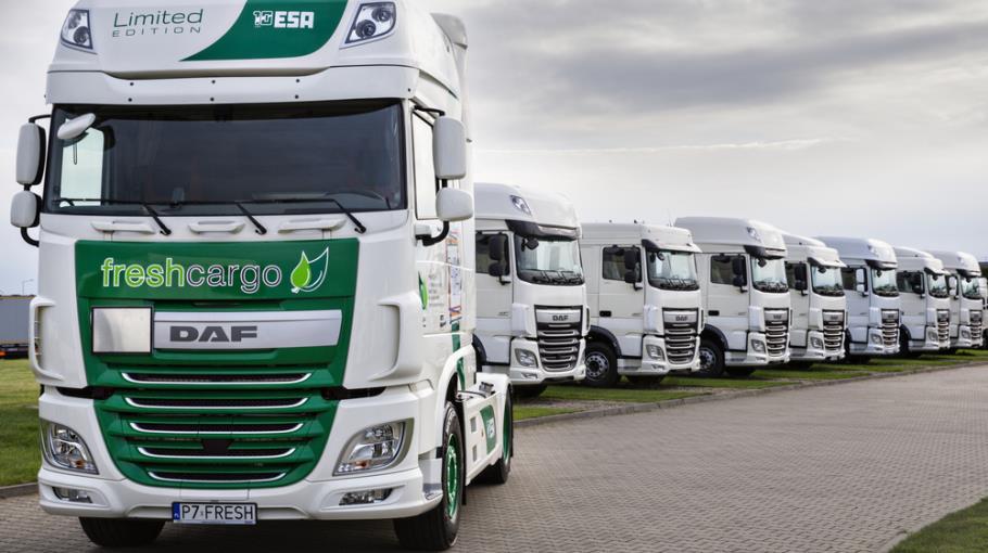 Fresh Cargo partnerem Duszyczek Wiary Lecha