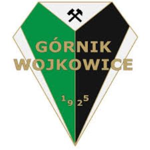 Herb klubu Górnik Wojkowice