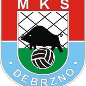 Herb klubu MKS Debrzno
