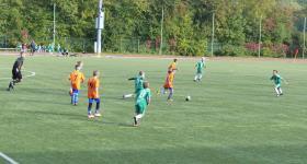 2010 D2 V LO 8 kolejka:  Stadion Śląski - Unia  obrazek 13