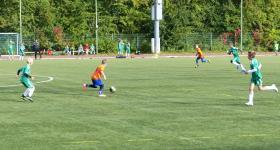 2010 D2 V LO 8 kolejka:  Stadion Śląski - Unia  obrazek 22