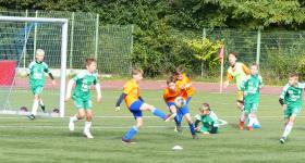 2010 D2 V LO 8 kolejka:  Stadion Śląski - Unia  obrazek 19