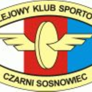 Herb klubu Czarni Sosnowiec
