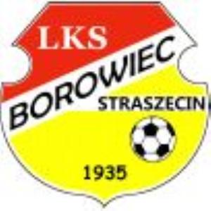 Herb klubu LKS  Borowiec Straszęcin