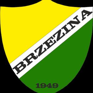 Herb klubu Brzezina Osiek