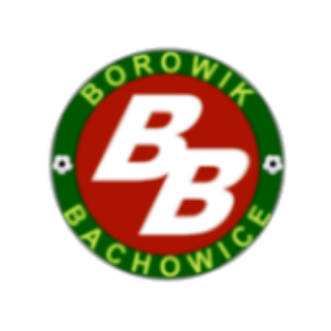 Herb klubu Borowik Bachowice