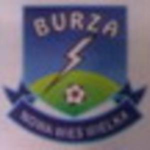 Herb klubu Burza Nowa Wieś W