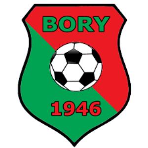 Herb klubu LKS Bory Pietrzykowice