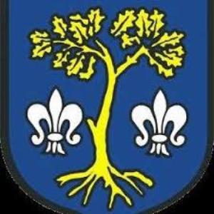 Herb klubu Dębowczanka Dębowiec